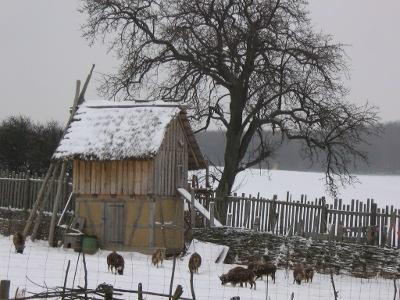 Hühnerturm im Schnei