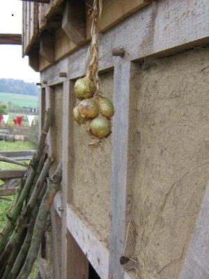Zwiebeln an der Hauswand