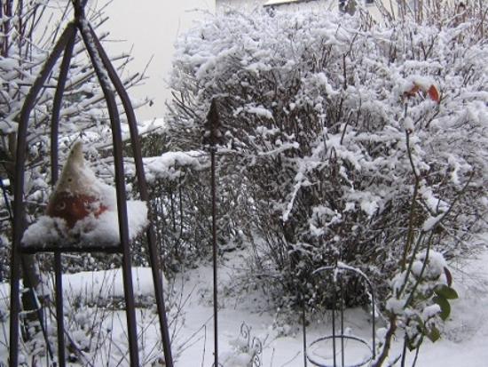 Schnee 2012